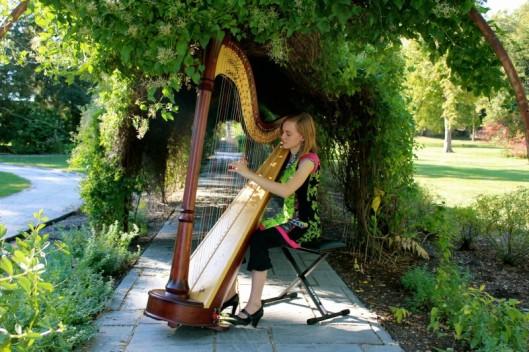 harp8
